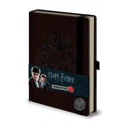 Notebook A5 Premium HARRY POTTER - Pouddlard