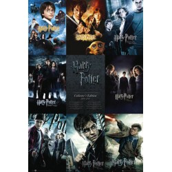 Maxi Poster  HARRY POTTER - Collection