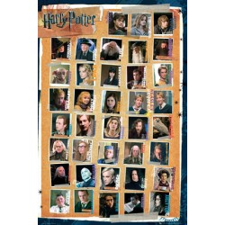Maxi Poster  HARRY POTTER - Personnages