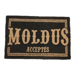 Paillasson HARRY POTTER Moldus acceptés